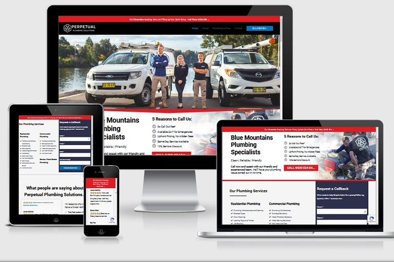 Polar Web Design Parramatta Client Portfolio - Perpetual Plumbing